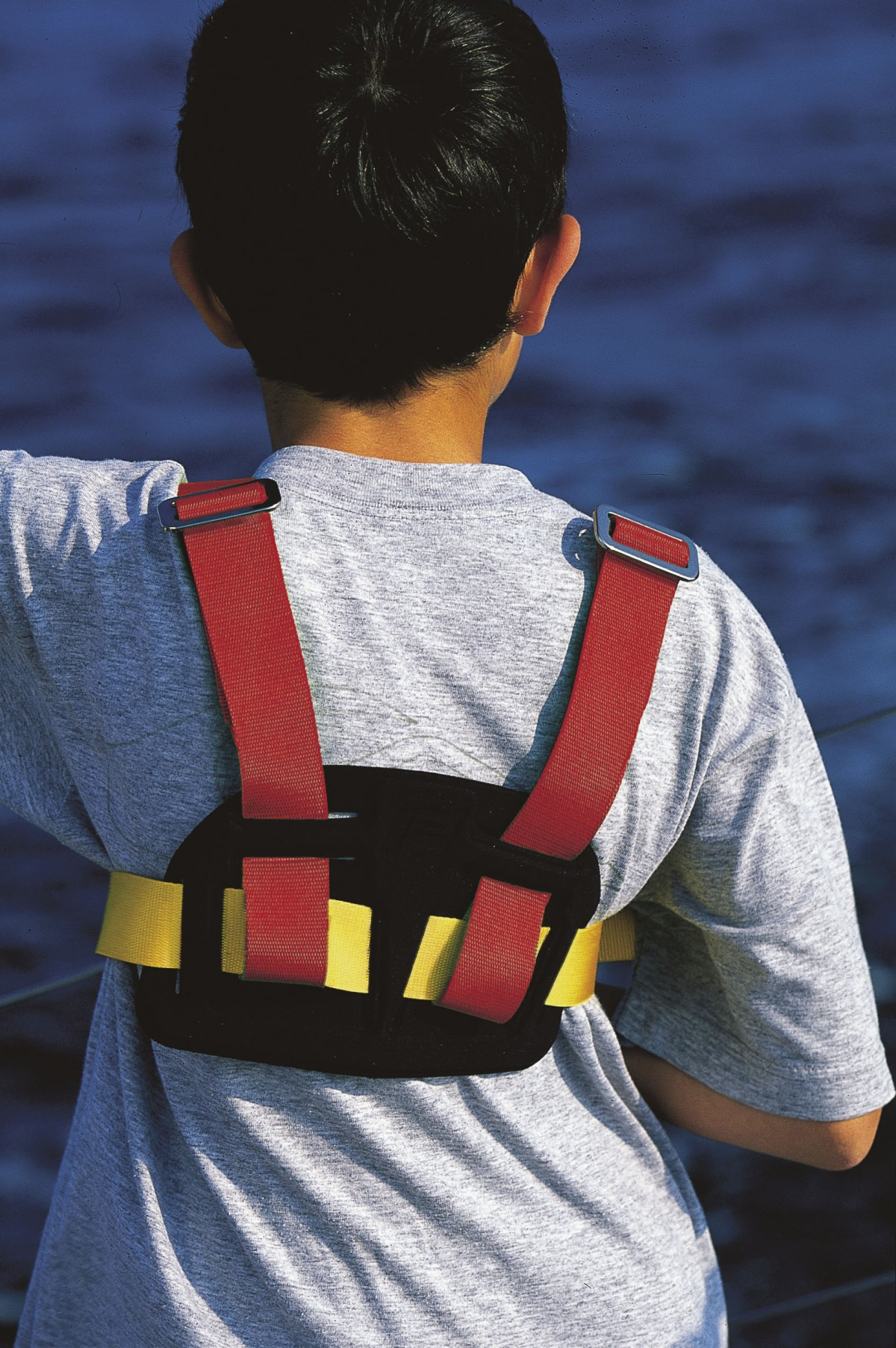 safety harness snap hooks  safety  get free image about